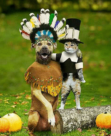 pets_thanksgiving