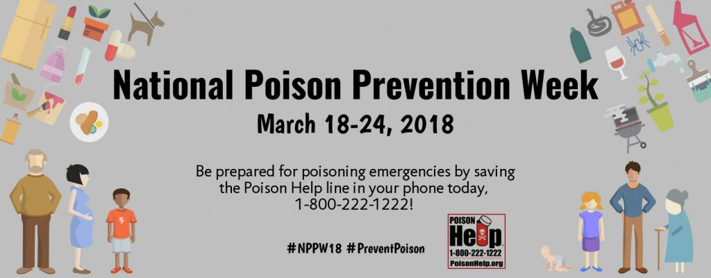 poison prevention pets